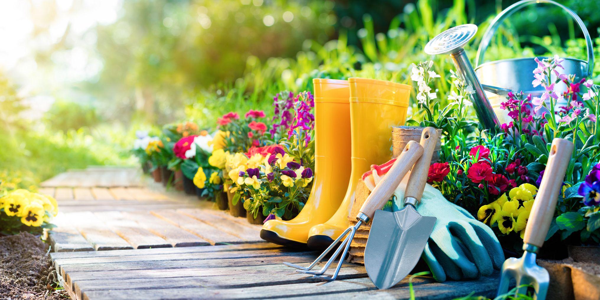 Calendarul grădinarului în mai