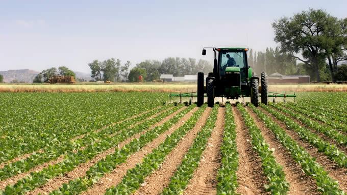 DE LA MINISTERUL AGRICULTURII: Subvenții pentru electrificarea câmpurilor