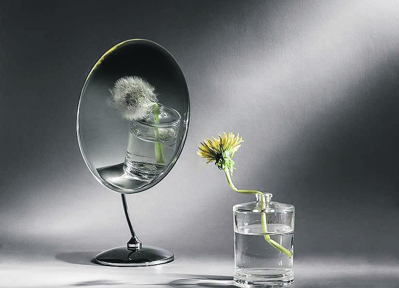 ",,Libertatea"" – oglinda realității noastre"