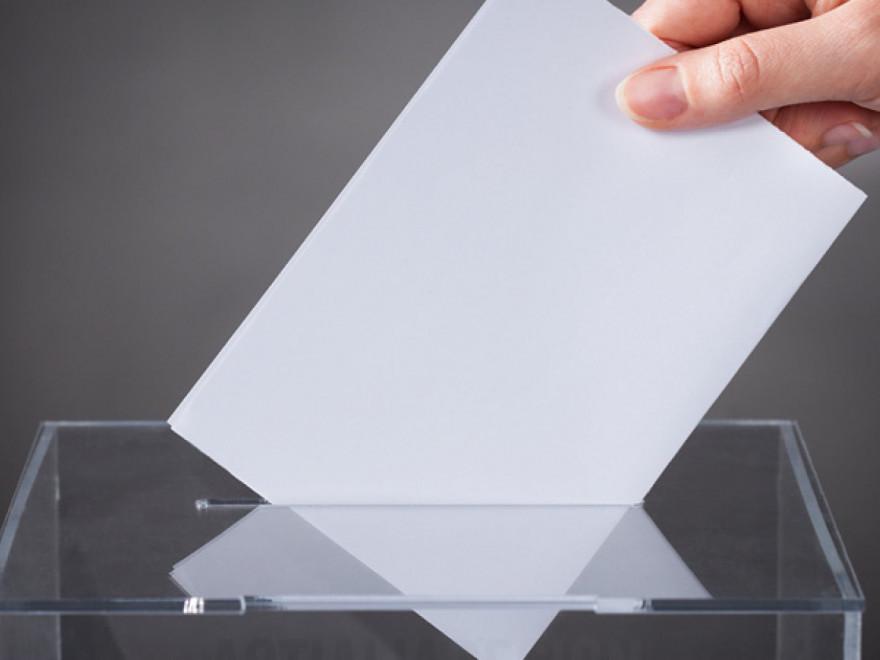 Alegerile parlamentare 2020