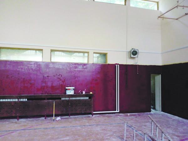Uzdin: Sala de educaţie fizică va fi ca și nouă