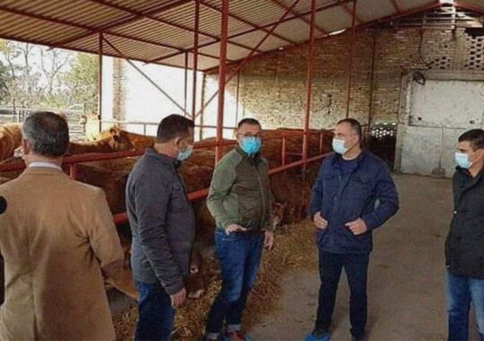 Stimulente pentru agricultori