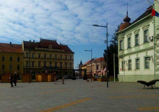 """Organizaţia Umanitară ,,Svetosavlje"""" acordă şi în acest an Burse pentru cei mai buni elevi şi studenţi"""