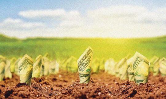 Bugetul agrar în anul 2021
