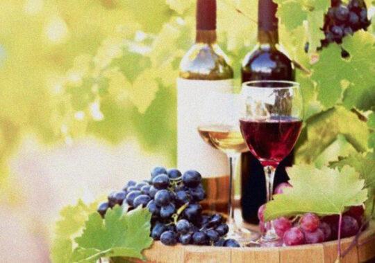 Este limitată cantitatea de vin importat de către un importator