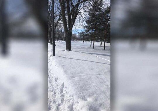Prima ninsoare din acest sezon la Vârșeț