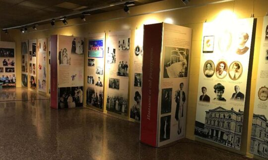 """Expoziția ,,Trifković în atenția publicului contemporan"""""""