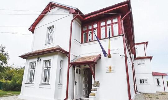 Mărțișorul în literatura română