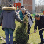 Au fost plantați 1.200 de copaci