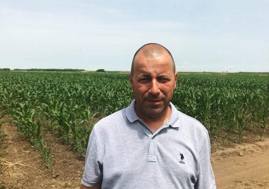 Suntem la începutul lunii iulie, deci se apropie recoltarea grâului