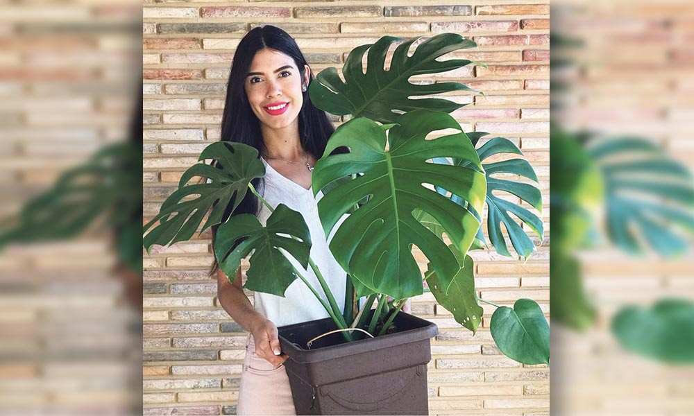 Plantele nu trebuie folosite cu scop decorativ pentru că și ele au viață