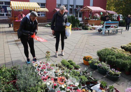 La Jitiște a avut loc Festivalul de flori